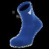 V-Socks512_blau.png