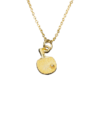 necklace_gold_small_z1.png