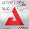 JOOLA_DYNARYZ-AGR.png