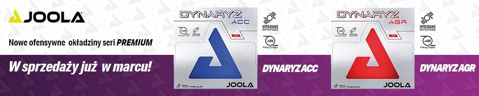 Dynaryz_2020_Teaser.jpg
