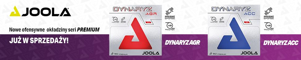 Dynaryz_AGR-ACC.jpg